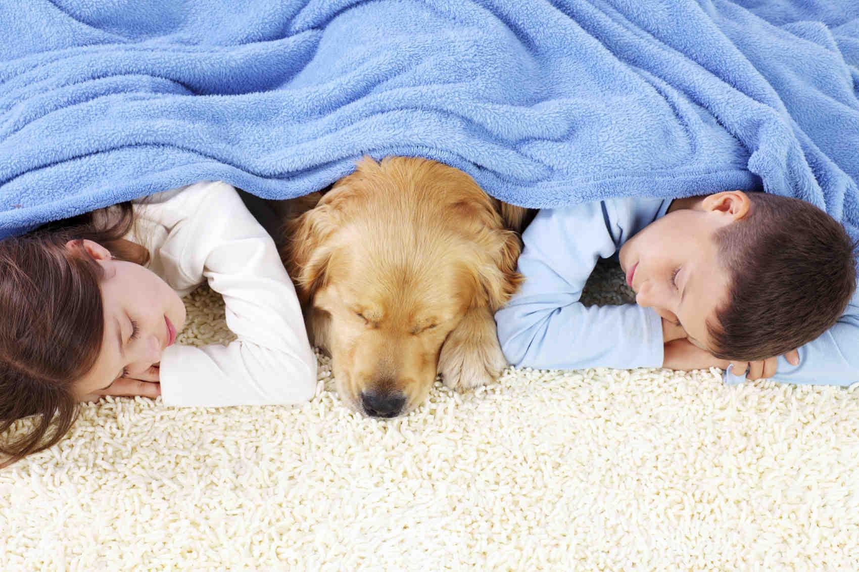 Il lavaggio del tappeto